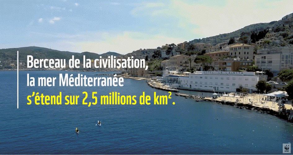 Polution méditerranée