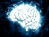 Dans cerveau : il y a eau (et il y en a même beaucoup) !