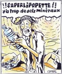 Les minéraux dans l'eau de boisson sont-ils assimilables ?