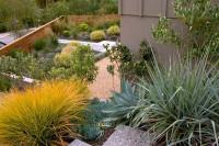 7 astuces de plus pour réduire votre consommation d'eau au jardin !